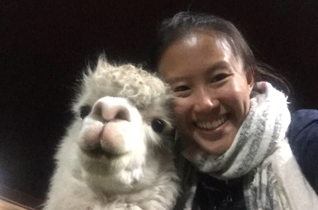 I had to learn to be photogenic from this ridiculously photogenic alpaca.