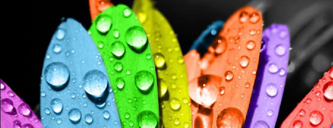 FS.Rain (cover image)