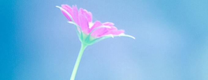 Nadea Emerald (cover image)
