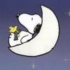 suhuiyun (avatar)