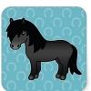 Blackponies (avatar)