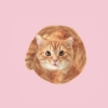 lipsmacksunshine (avatar)