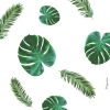 Almondbutter (avatar)