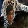 theleopard (avatar)