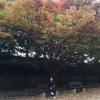 mydreamzzz (avatar)