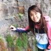weicinhong (avatar)