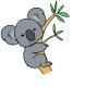 koalat (avatar)