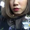 rollietheroller (avatar)