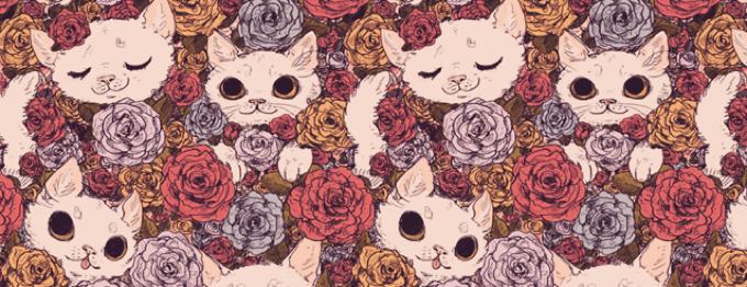 roxy (꒪ৱ৹) (cover image)