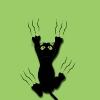 pllng (avatar)