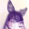 jujujudy (avatar)