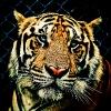 henghwa (avatar)