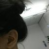 dandelionpieces (avatar)