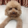 meiiiyee (avatar)