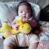 kitwei (avatar)