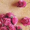 lavenderpopsicles (avatar)