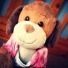 doggiepoo (avatar)