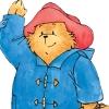 mspaddingtonbear (avatar)