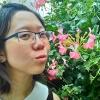 joyfulcircus (avatar)
