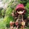jolinkoh (avatar)