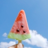 watermelonpopsicle (avatar)