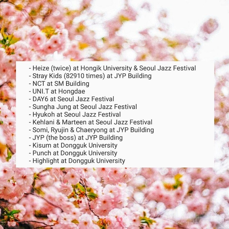 🇰🇷 SEOUL D9: Tongin Market • Myeongdong - kitcake - Dayre
