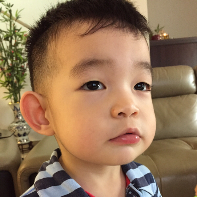I Also Attached The 3 Years Of Reports At His Montessori School A Facebook Challenge -1007