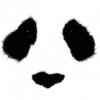 MsDisaster (avatar)