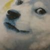 dogelover (avatar)