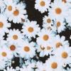 happygreentea (avatar)