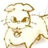 cocoakitten (avatar)