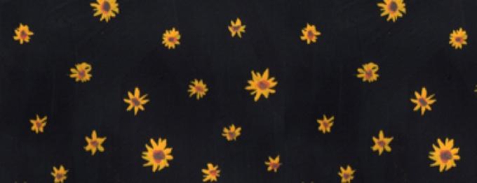 Effie Tan  (cover image)