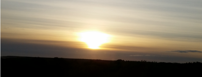 Sunshinedragon (cover image)