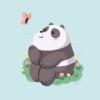pandass (avatar)