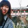 lisienwong (avatar)