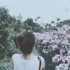 Dorothyxng (avatar)